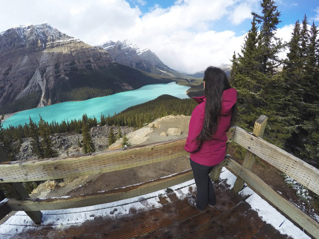 A spectacular view of Peyto Lake in Canada