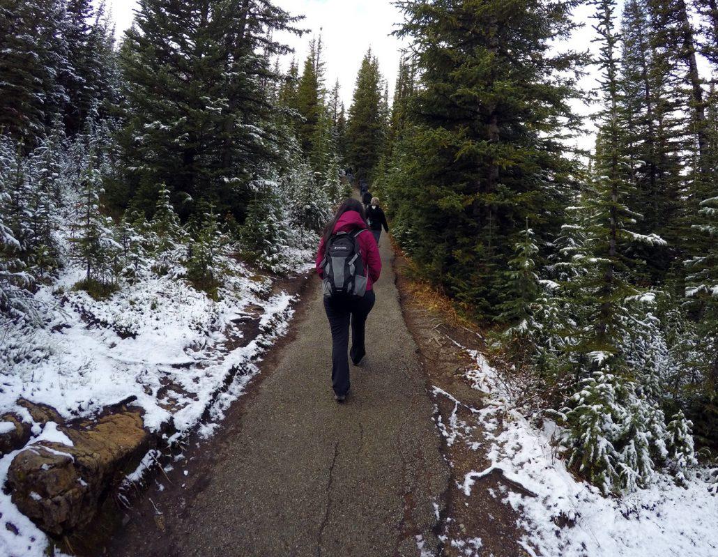 Back on trail path