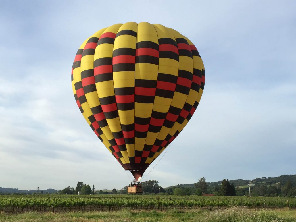 landing near a winery